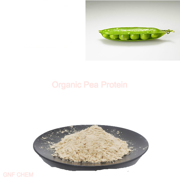 Organic Pea Protein Featured Image