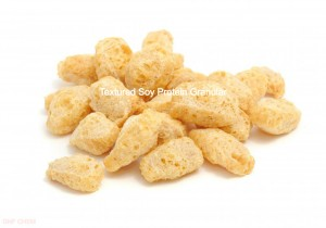 Soy Protein Textured